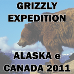 Grizzly Expedition logo - Spedizioni