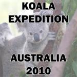 Spedizioni - Koala Expedition Logo