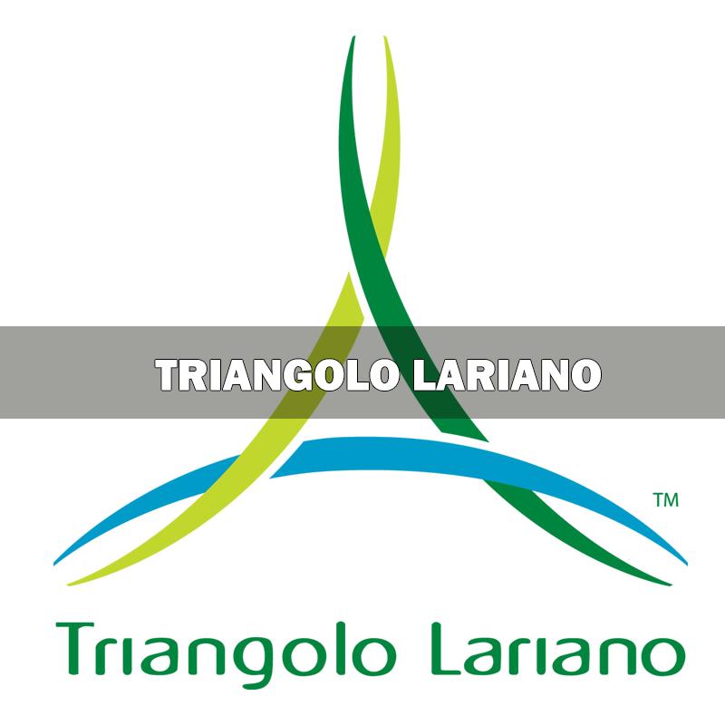 webapp Triangolo Lariano