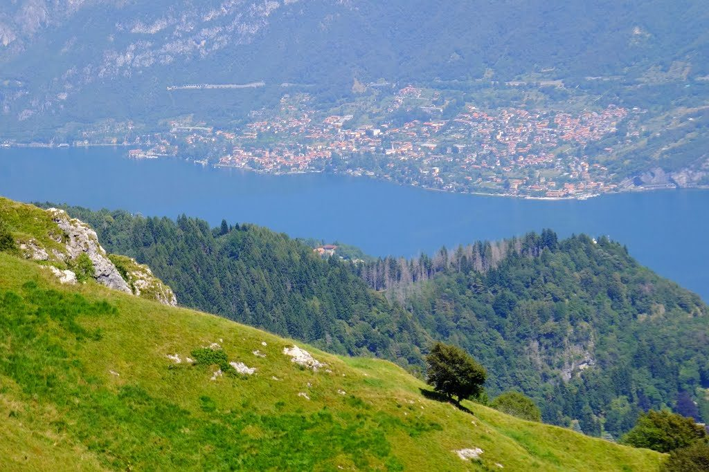 Punto panoramico dall'Alpe Spessola