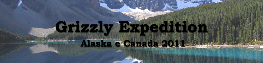 Header Alaska e Canada - Grizzly Expedition