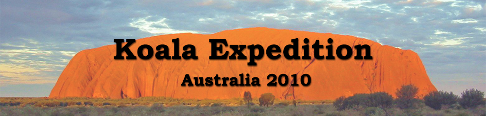 Header Australia - Koala Expedition